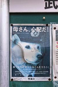 残念なお知らせ - 暗 箱 夜 話 【弐 號】