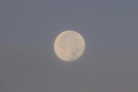 満月 - 「 ボ ♪ ボ ♪ 僕らは釣れない中年団 ♪ 」