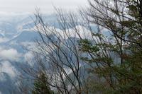 雨の大台ケ原DW③ - katsuのヘタッピ風景