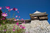 松山城天守 - かたくち鰯の写真日記2