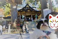 【犬と】三峯神社でお犬様を参拝する。【歩けば】 - Simoneは洋裁したり、読書したり、外食したり。Симоне шије, чита и једе/Simone šije, čita i jede