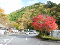 Autumn leaves at Mt. Mitoh - Hike in and around Tokyo