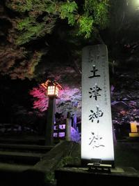 【裏磐梯】土津神社 紅葉ライトアップ - いぬのおなら