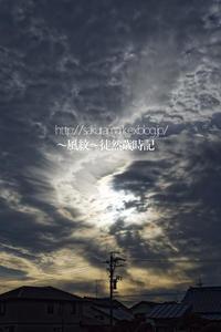 pm 03:35 - ~風紋~徒然歳時記