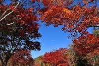 福原山荘② - Photo Of 北海道大陸