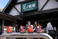 江ノ電乗って歩いてまた乗って - 撮ろ 撮り 撮る 撮れ 撮れば ruchanのフォト遊び