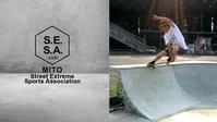 茨城県水戸市に公設スケボーパーク設立の為に賛同署名をお願いします! - Growth skateboard elements