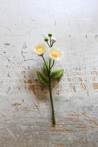 オフフープ🄬立体刺繍のハルジオン~「フェルト刺しゅうの花図鑑」掲載作品~ - フェルタート(R)・オフフープ(R)立体刺繍作家PieniSieniのブログ