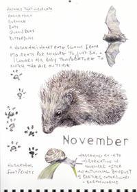 11月-冬眠の準備がはじまる- - ブルーベルの森-ブログ-英国カントリーサイドのライフスタイルをつたえる