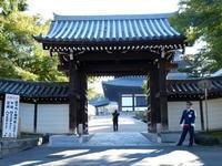ぶらり京都一人旅その2東福寺 - 自然がいっぱい3