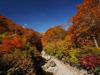 鳥海山山麓の紅葉 - tokoya3@
