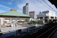 ■高校同期会と江戸東京博物館18.10.31 - 舞岡公園の自然2