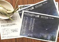 来月は《Dugong展》です🎶 - およぐ、ジュゴン!