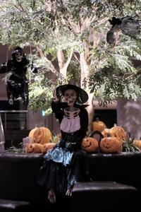Happy Halloween - aya's photo