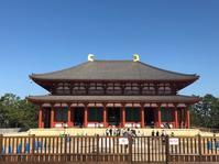 興福寺と奈良町 - 風の中の小鳥