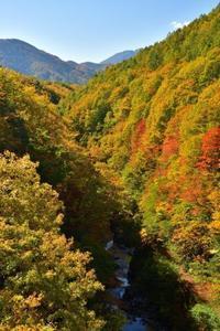 裏磐梯の紅葉絶景ポイント - フォト・フレーム  - 四季折々 -