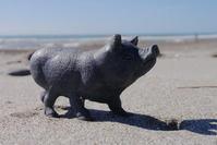 渥美の黒豚 - Beachcomber's Logbook