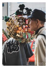 一の酉 - ♉ mototaurus photography