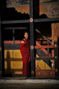 インド~ブータンの今㉕・修行と欲望の日々 - 夢・ファンダンゴ