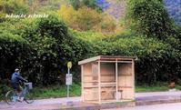 トトロのバス停 - 今が一番