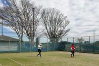 テニスができる喜び - テニスのおじさま日記