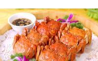 リーズナブルに上海蟹が食べれるオススメレストラン - 中国ニュース