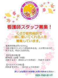 求人案内 - 宮城県富谷市明石台  くさか動物病院ブログ