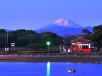 今季初冠雪した霊峰富士を多々良沼から遠望す - 『私のデジタル写真眼』