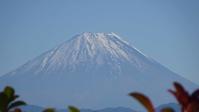 韮崎から望む富士山11/2 - つくしんぼ日記 ~徒然編~