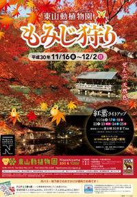 東山動植物園もみじ狩り&紅葉ライトアップ2018 - 愛知・名古屋を中心に活動する女性ギタリストせきともこのブログ