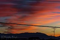 朝から撃沈 - 撃沈風景写真