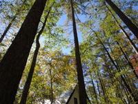 秋の高原は… - モルゲンロート