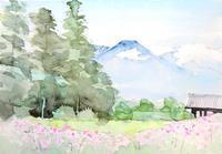 有明山と秋桜 - ryuuの手習い