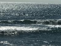 台湾佳楽水 今日の波 腹〜胸サイズ 晴れサイドオン - 台湾サーフィン 佳楽水は今日もいい波    佳楽水好浪!