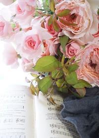 3人3様の美、WABARAも生徒さんも - お花に囲まれて