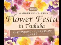 Tsukuba Flower Festa 2018 - Gardener*s Diary