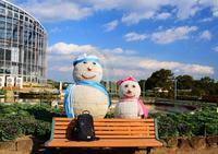 茨城県フラワーパーク - ひな日記