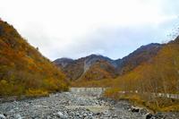 大谷崩周辺の紅葉 - やきつべふぉと