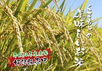 熊本の美味しいお米(七城米、菊池水源棚田米、砂田のれんげ米)大好評発売中!こだわり紹介その1 - FLCパートナーズストア