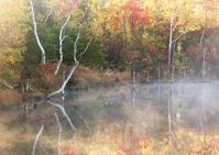 まいめの池3 - Patrappi annex