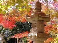 大朝、ほとけばら遊園秋色。 - 大朝=水のふる里から