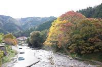 深まりゆく秋 - しゃしんにっき
