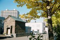 イチョウと札幌軟石の蔵と業務用カラーネガフィルム - 照片画廊