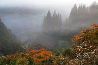 朝霧 - 松之山の四季2