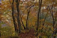 刈込池の紅葉は終わりかけ - 四季燦燦 癒し系~^^かも風景写真