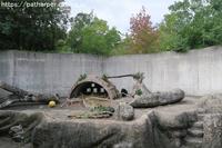 2018年10月とくしま動物園その3 - ハープの徒然草