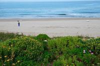 山陰海岸ジオパークトレイルコース1 - bigbird's life