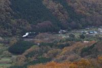 紅葉の山に白煙が浮かんだ- 秩父鉄道・2016年秋 - - ねこの撮った汽車