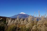 富士山 - ふくろほーのつぶやき