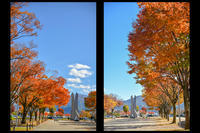 秋の一日 - たなぼた